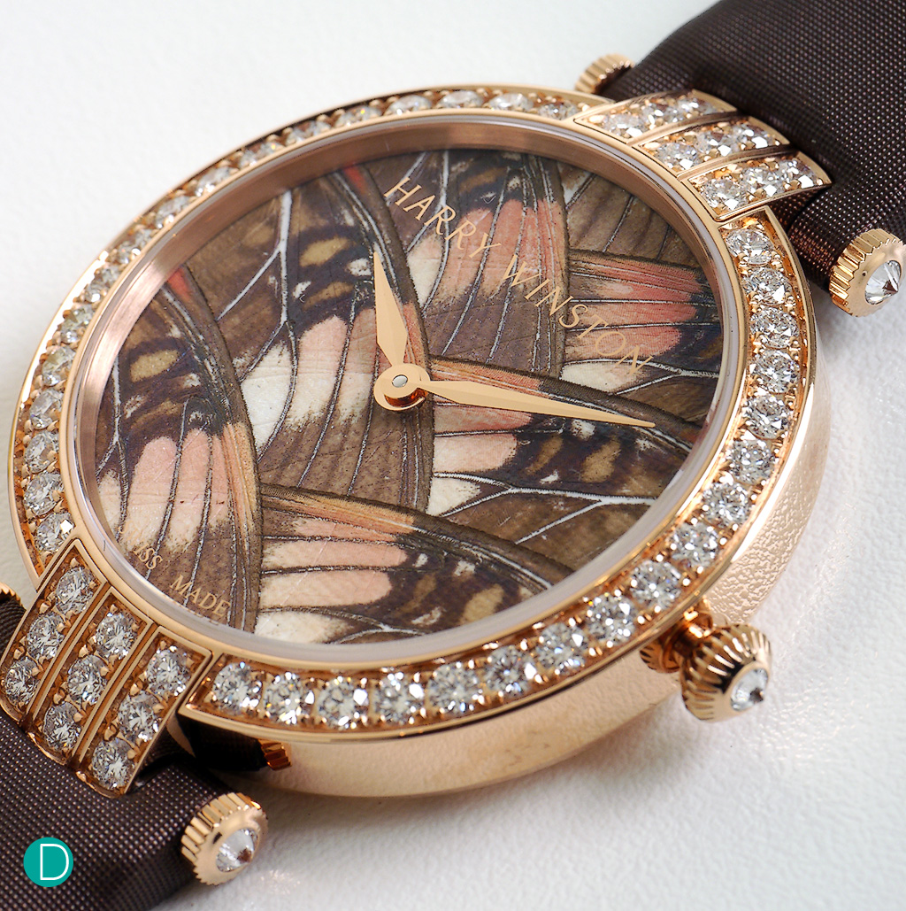 Harry Winston Premier Precious Butterfly Collection: The Adelpha Lara butterfly marquettry motif on metal, in 18k rose gold case.